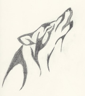 shaded wolf
